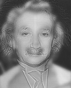 Einstein_Monroe